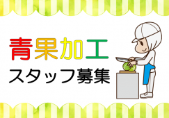 【勝どき】青果加工▲時給1300円▲選べる勤務時間 イメージ