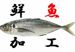 【戸塚】水産加工×時給1600円×交通費支給 イメージ